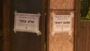 fot. Noam Bar-Shalom